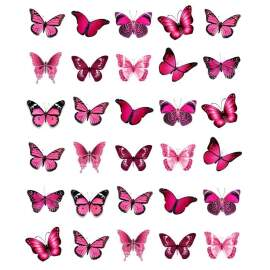 Wafer Paper Butterfly (pink)